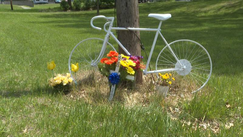Rausch died after being struck by a car in Sylvania Township in March.
