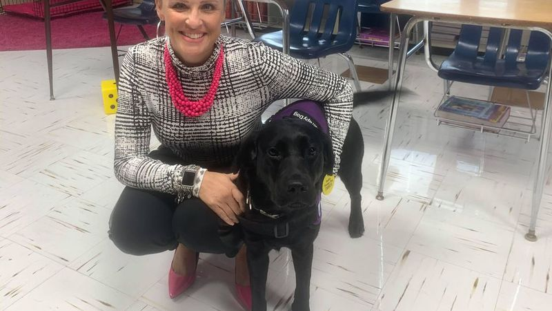 Meet Ember: Whitmer's new therapy dog  Ember is a pure bred black lab from the Assistance...