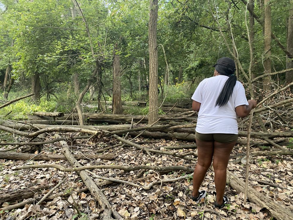 Volunteers search the surrounding wooden area behind Hunter's Ridge Apartments.