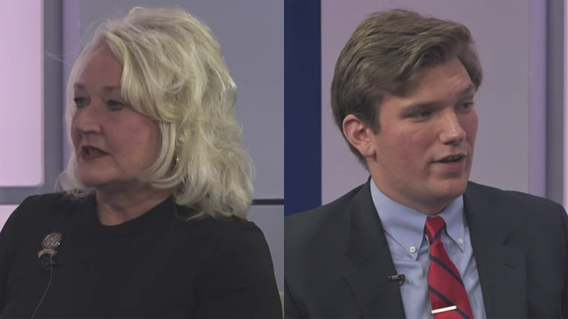 State Rep. Lisa Sobecki and Shane Lawson are vying for the Ohio House seat for the 45th District.