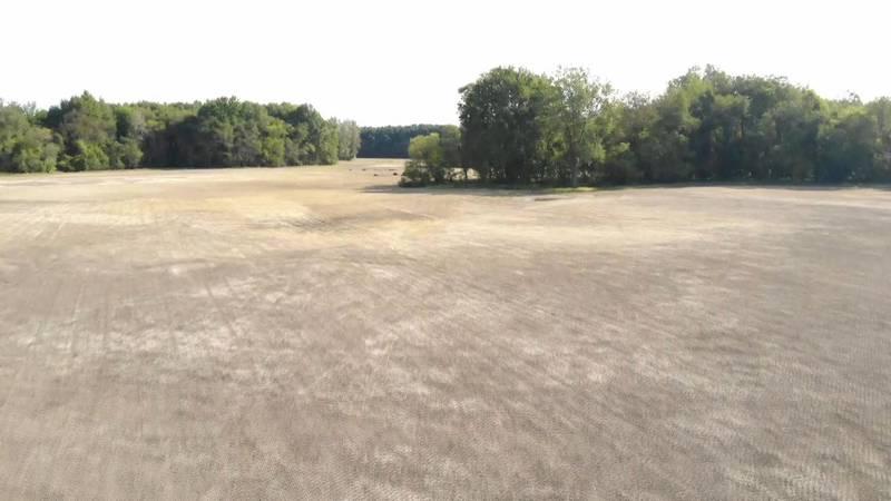 Oak Openings Preserve Wetland Restoration