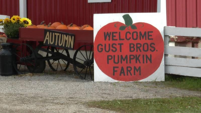 Gust Bros. Pumpkin Farm