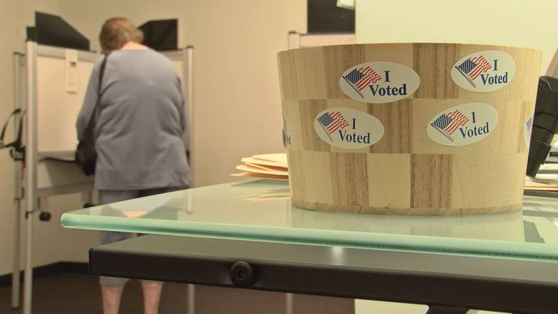 Study looks at how well states are protecting voter data.