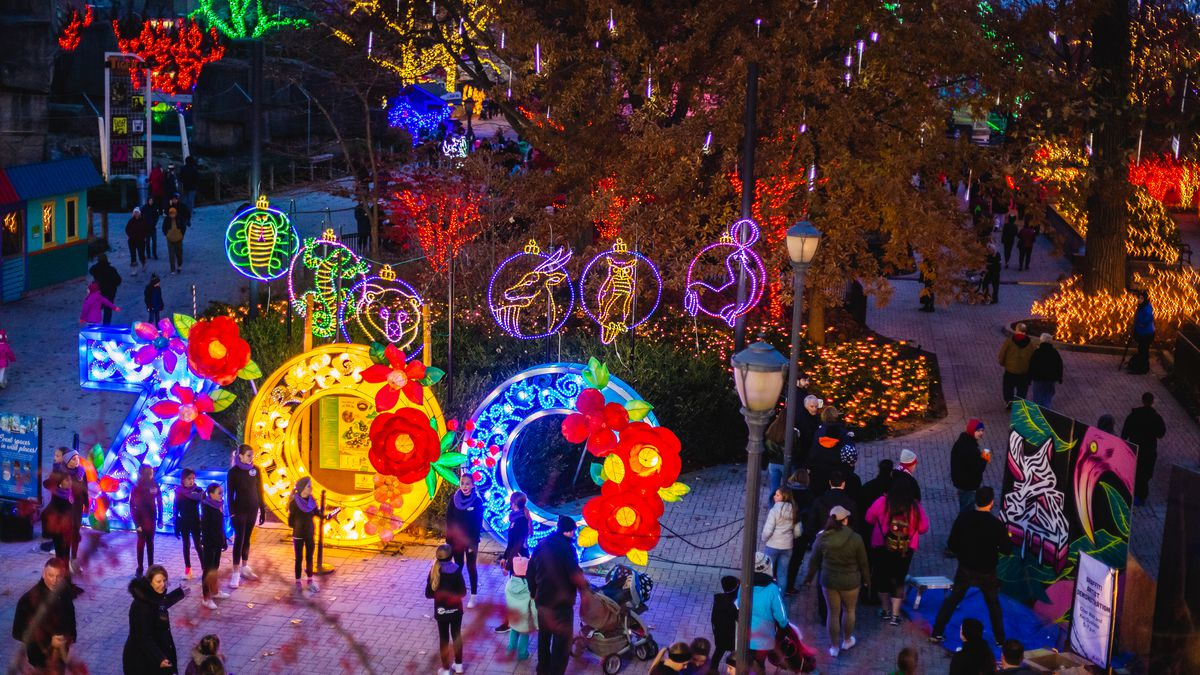 Lights Before Christmas at the Toledo Zoo.