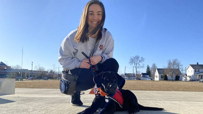 UFindlay senior Rachael Quandt is behind the initiative that pairs puppies with students, to...