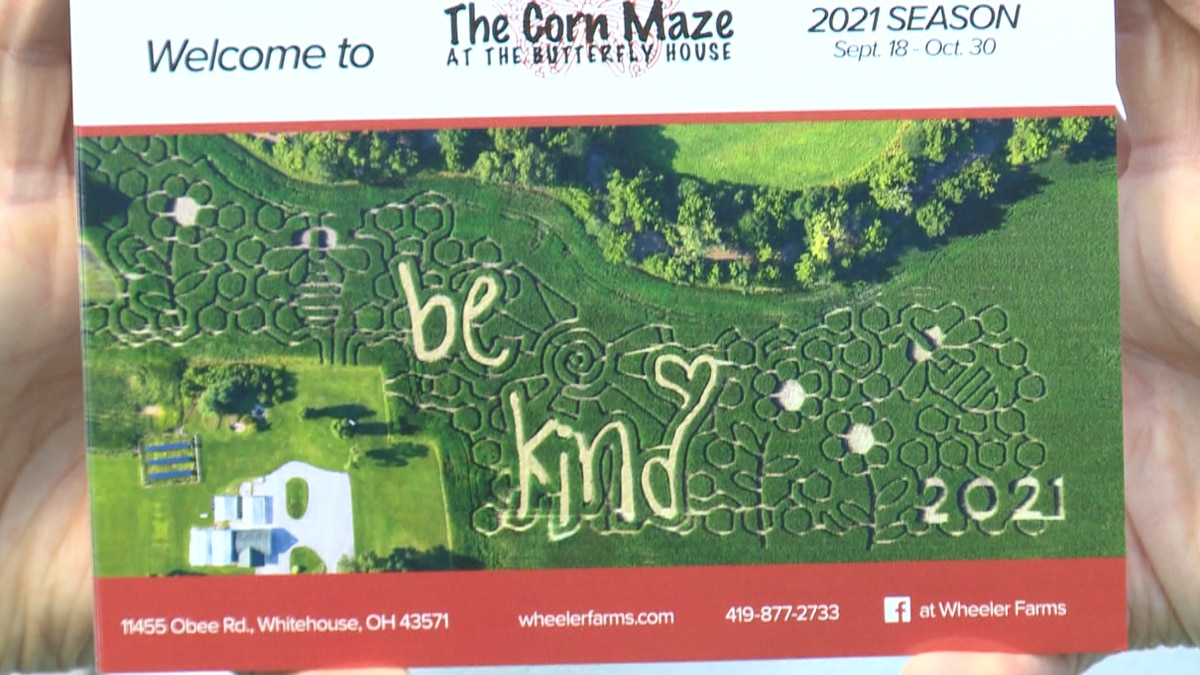 Wheeler Farms' mazes have had a wide range of designs in their 12 years and counting, many of...