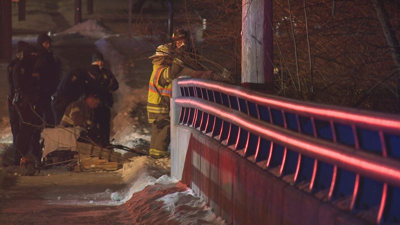 A car crashed into the wooded area of Jermain Park off Upton, closing the bridge overnight.