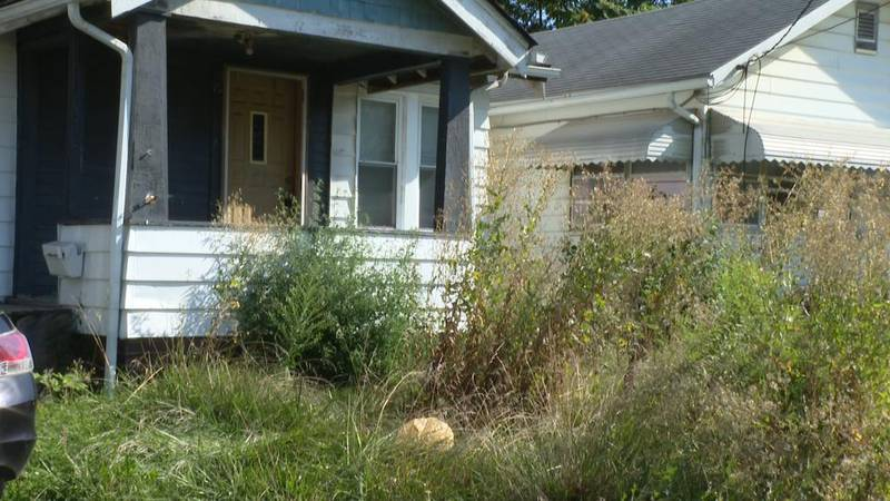 Residents have reached out to the city about the overgrown grass, but nothing has been done.