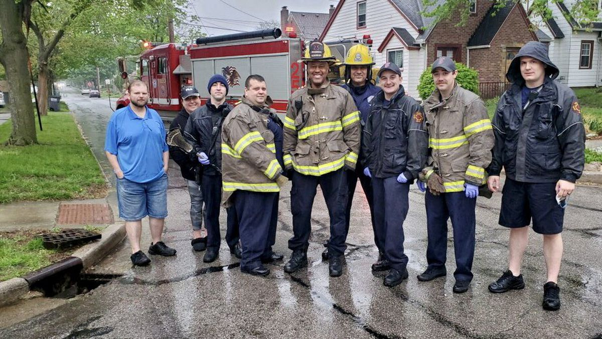 Toledo Fire personnel rescued six ducklings from a storm sewer on Monday, May 3.