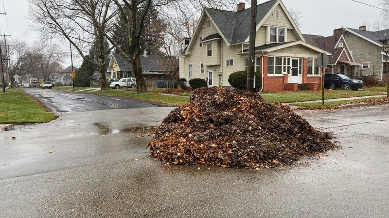 The City of Toledo is still working on leaf collection. Employees will transition to snow...