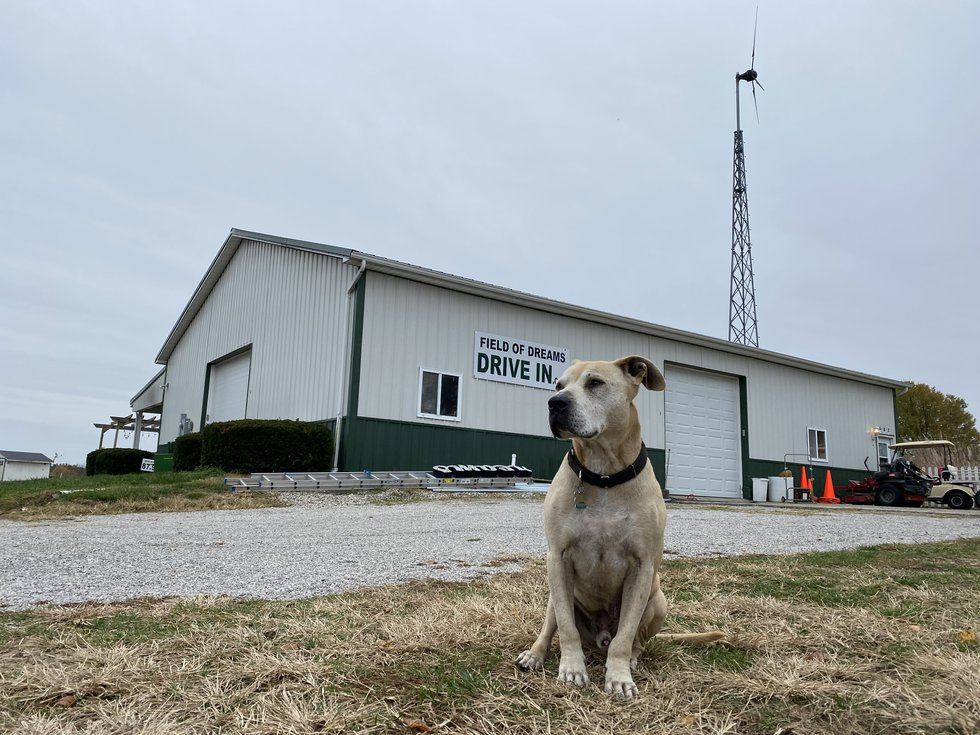 Callan Bauer's family dog Diesel sits outside of the Field of Dream Drive In's main entrance.