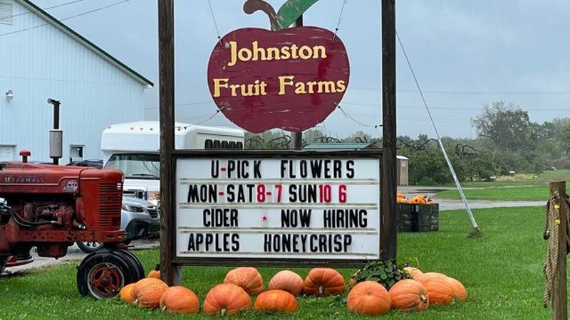 Dozens of varieties of apples are grown at the Swanton Farm