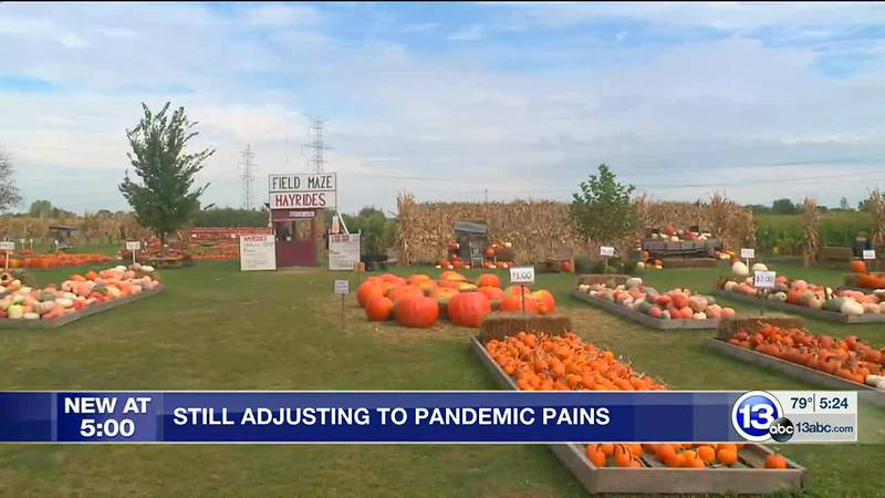 Still adjusting to pandemic pains